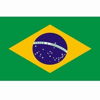 Braziliaanse vlag, vlag Brazilië