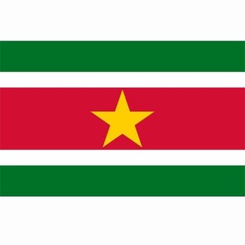 Surinaamse vlag, vlag Suriname