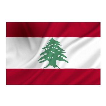 Vlag van Libanon, Libanese vlag