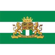 Vlag rotterdam, rotterdamse vlag met leeuw