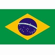 Braziliaanse vlag Brazilië