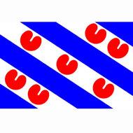 vlag provincie friesland friese vlag