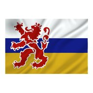 Limburgse vlag provincie Limburg